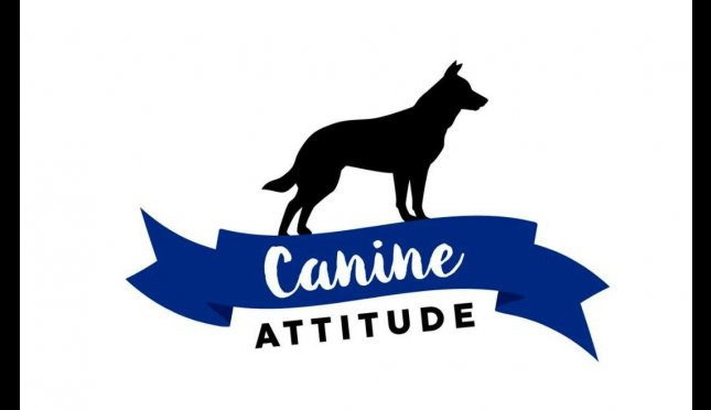 Canine Attitude