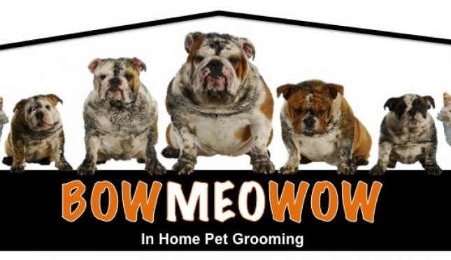 Bowmeowow LLC