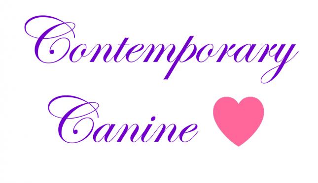 Contemporary Canine