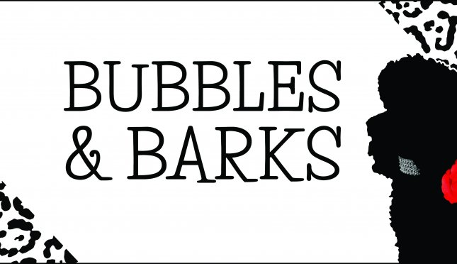 Bubbles And Barks Dog Spa And Boutique