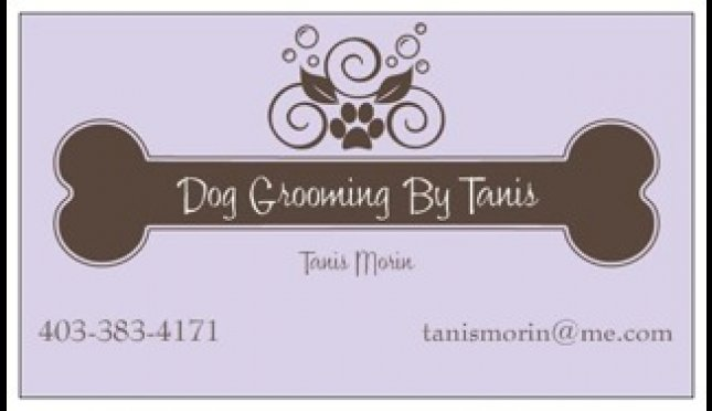 Dog Grooming By Tanis