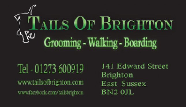 Tails Of Brighton