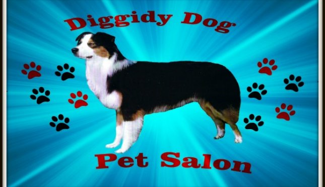 Diggidy Dog Pet Salon's
