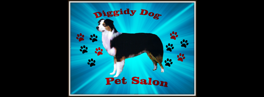 Diggidy Dog Pet Salon's