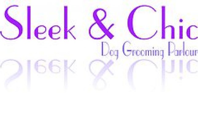 Sleek & Chic Dog Groomers