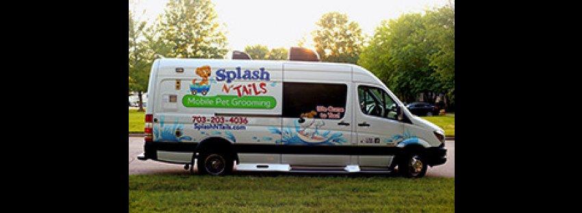 Splash N Tails