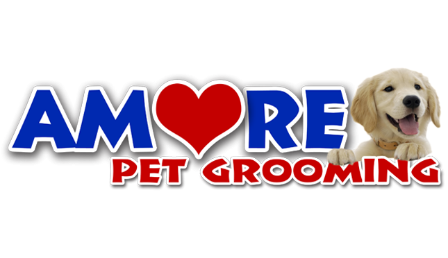 Amore Pet Grooming