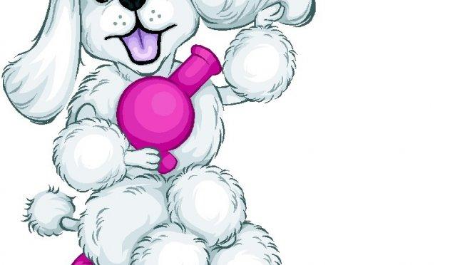 Make It Cute! Dog Grooming