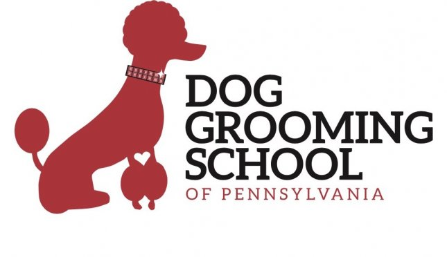 Dog Grooming School Of PA