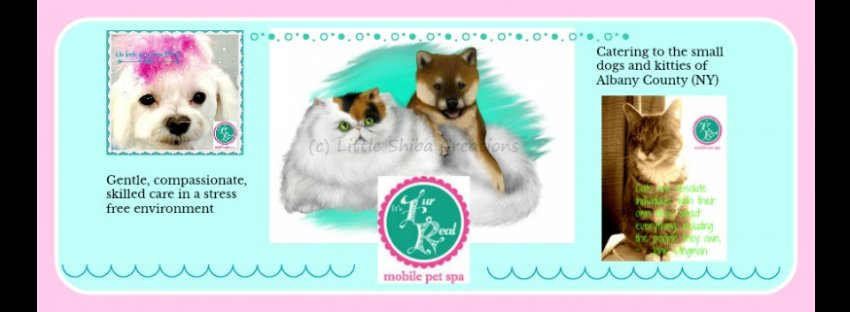 It's Fur Real Mobile Pet Spa