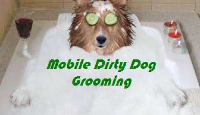 Mobile Dirty Dog Grooming