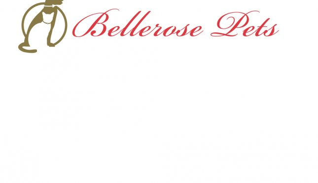 Bellerose Pets