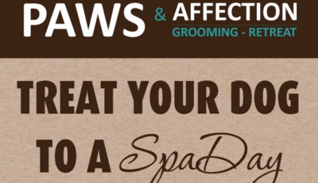 Paws And Affection Grooming Retreat