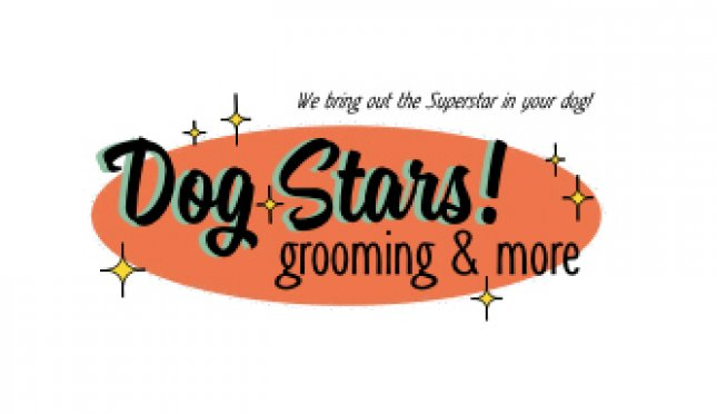 Dog Stars! Grooming & More