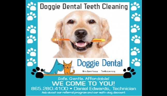 Doggie Dental