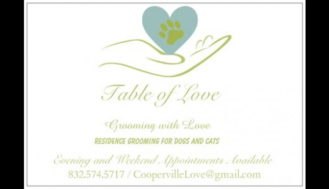 Table Of Love Grooming