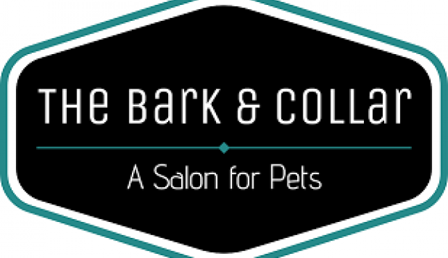The Bark & Collar