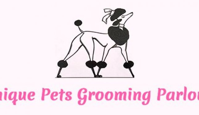 Chique Pets Grooming