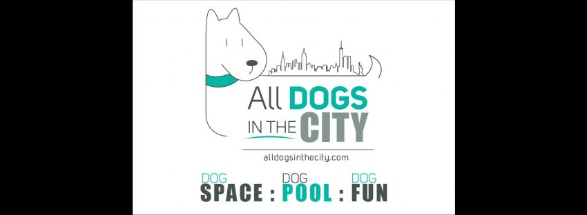 All Dogs In The City