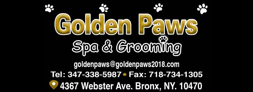 Golden Paws Spa & Grooming