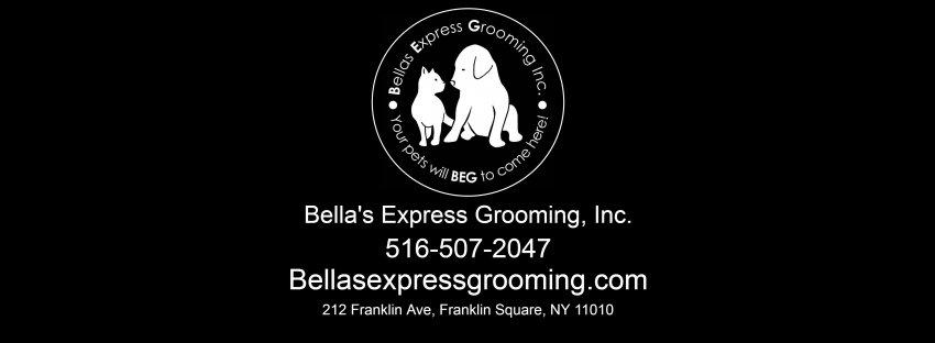 bella's express grooming